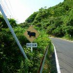 長崎県平戸をドライブ。根獅子の浜海水浴場