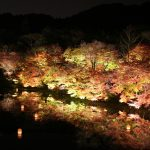 佐賀県武雄市の御船山楽園のライトアップを撮影してきた